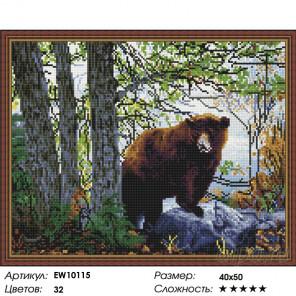 Количество цветов и сложность Медведь в лесу Алмазная вышивка мозаика на подрамнике EW10115