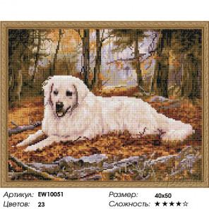 Количество цветов и сложность Милый друг Алмазная вышивка мозаика на подрамнике EW10051