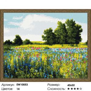Количество цветов и сложность Летний луг Алмазная вышивка мозаика на подрамнике EW10053