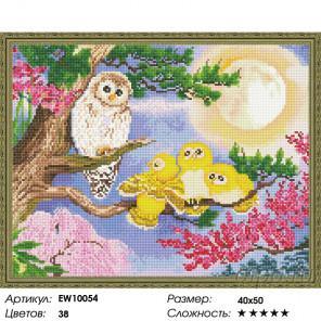 Количество цветов и сложность Совиное семейство Алмазная вышивка мозаика на подрамнике EW10054