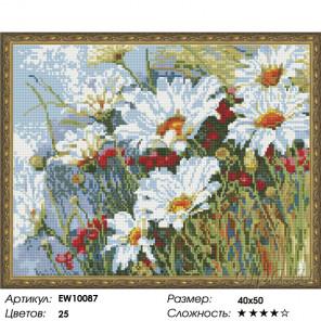Количество цветов и сложность Поле ромашек Алмазная вышивка мозаика на подрамнике EW10087