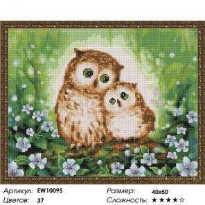 Количество цветов и сложность Сова и совенок Алмазная вышивка мозаика на подрамнике EW10095