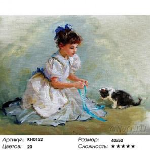 Количество цветов и сложность Мяу Раскраска картина по номерам на холсте KH0152