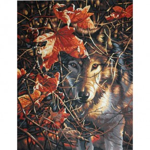 Волк в осеннем лесу Раскраска картина по номерам Dimensions