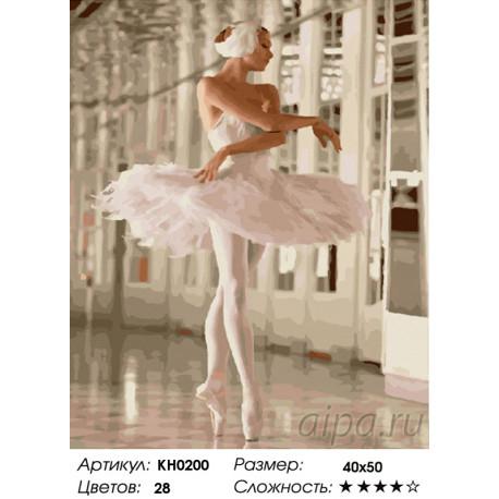 Количество цветов и сложность Белая лебедь Раскраска картина по номерам на холсте KH0200