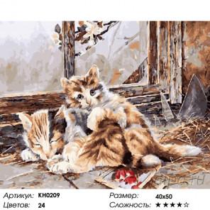 Количество цветов и сложность На чердаке Раскраска картина по номерам на холсте KH0209