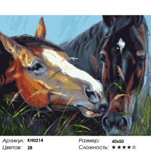 Количество цветов и сложность С любовью Раскраска картина по номерам на холсте KH0214