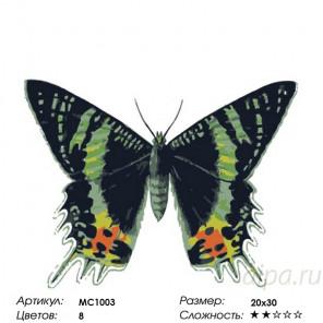Количество цветов и сложность Урания мадагаскарская  Раскраска картина по номерам на холсте MC1003