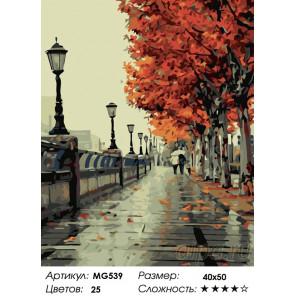 Количество цветов и сложность  Фонари на осенней аллее Раскраска картина по номерам на холсте MG539