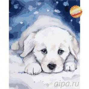 Снежок Раскраска картина по номерам на холсте