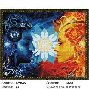 Количество цветов и сложность Инь-Янь Алмазная мозаика на подрамнике КМ0002