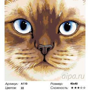Количество цветов и сложность Сиамская кошка Раскраска картина по номерам на холсте A110
