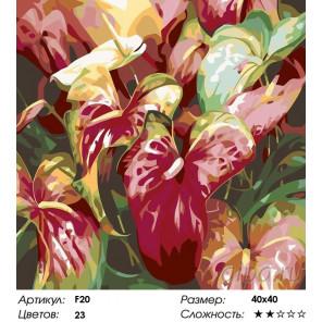 Количество цветов и сложность Каллы Раскраска картина по номерам на холсте F20