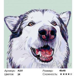 Количество цветов и сложность Вулфи Раскраска картина по номерам на холсте A231