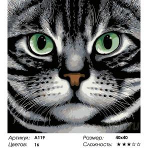 Количество цветов и сложность Зеленые глаза Раскраска картина по номерам на холсте A119