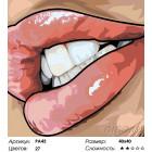 Количество цветов и сложность Губы Раскраска картина по номерам на холсте PA45