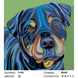 Количество цветов и сложность Ротвейлер Раскраска картина по номерам на холсте A146