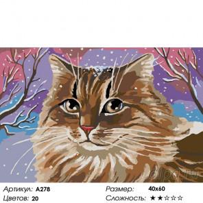 Кошачий портрет Раскраска картина по номерам на холсте A278