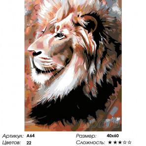 Портрет льва Раскраска картина по номерам на холсте A64
