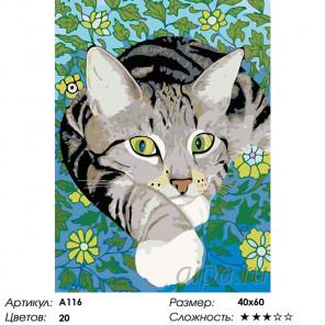 Количество цветов и сложность Хитрый взгляд Раскраска картина по номерам на холсте A116