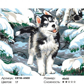 Количество цветов и сложность Щенок хаски Раскраска картина по номерам на холсте KRYM-AN05