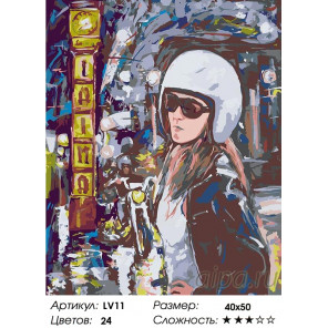Количество цветов и сложность Поездка на мотоцикле Раскраска картина по номерам на холсте LV11