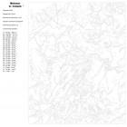 Схема Аромат цветов Раскраска картина по номерам на холсте A186
