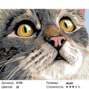 Количество цветов и сложность Удивление Раскраска картина по номерам на холсте A106