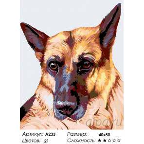 Количество цветов и сложность Гермес Раскраска картина по номерам на холсте A233
