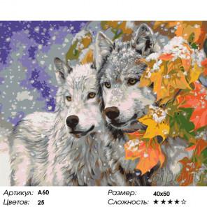 Пара волков Раскраска картина по номерам на холсте A60