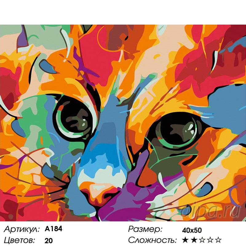 A184 Яркий кот Раскраска картина по номерам на холсте ...