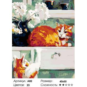 Количество цветов и сложность Два рыжих кота Раскраска картина по номерам на холсте A82