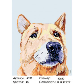 Количество цветов и сложность Урси Раскраска картина по номерам на холсте A250