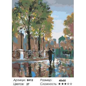 Количество цветов и сложность Прогулка в дождь Раскраска картина по номерам на холсте BH12
