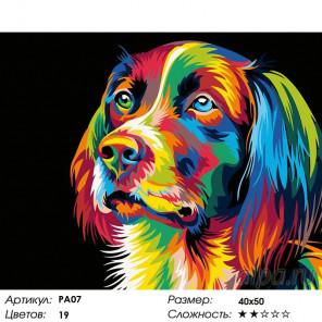 Количество цветов и сложность Радужный пес Раскраска картина по номерам на холсте PA07