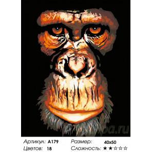 Количество цветов и сложность Портрет обезьяны Раскраска картина по номерам на холсте A179
