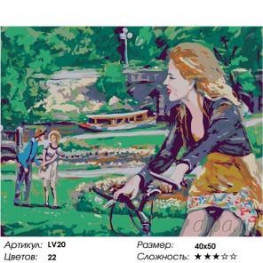 Количество цветов и сложность Прогулка на велосипеде Раскраска картина по номерам на холсте LV20