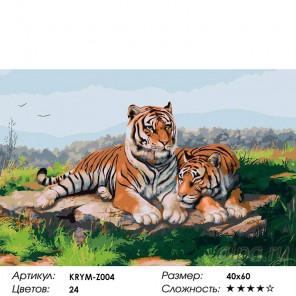 Пара тигров Раскраска картина по номерам на холсте
