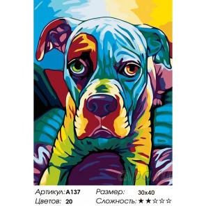 Количество цветов и сложность Радужный боксер Раскраска картина по номерам на холсте A137