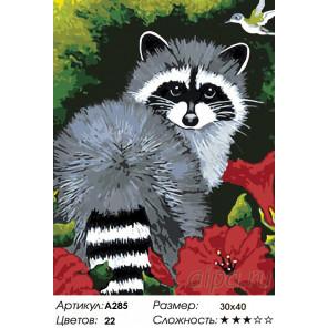 Енотик Раскраска картина по номерам на холсте A285