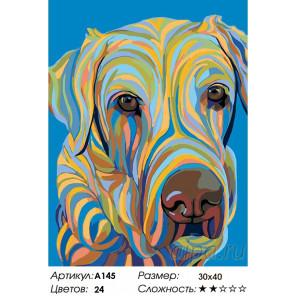 Количество цветов и сложность Разноцветный пес Раскраска картина по номерам на холсте A145