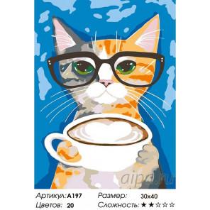 Капучино Раскраска картина по номерам на холсте A197