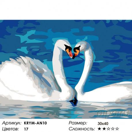 Количество цветов и сложность Пара лебедей Раскраска картина по номерам на холсте KRYM-AN10