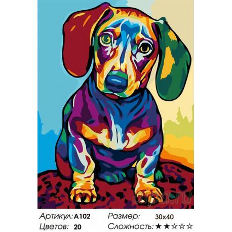 Количество цветов и сложность Радужный щенок Раскраска картина по номерам на холсте A102