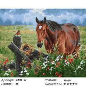 Сложность и количество красок Лошадка на лугу Раскраска картина по номерам на холсте GX25107