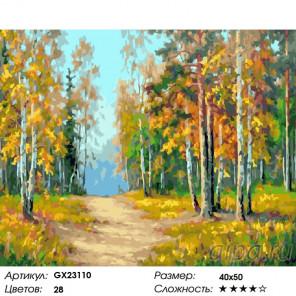 Сложность и количество красок Осенняя тропа Раскраска картина по номерам на холсте GX23110