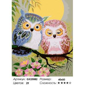 Количество цветов и сложность Две совы Раскраска картина по номерам на холсте GX25082