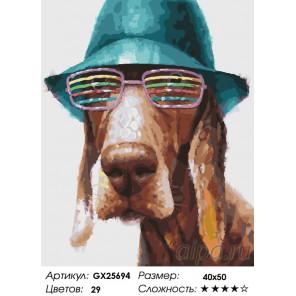 Количество цветов и сложность Собака в шляпе Раскраска картина по номерам на холсте GX25694
