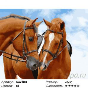 Количество цветов и сложность Пара лошадей Раскраска картина по номерам на холсте GX24588