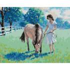 Девушка и лошадь Раскраска картина по номерам на холсте GX24928